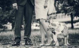 Сватбен фотограф, сватбена фотография, ива грозева, сватба, сватбени, svatba, svatben fotograf, фотосесия, професионален фотограф, www.ivagrozeva.com (21)